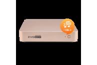 Караоке-система для дома EVOBOX, цвет-GOLD